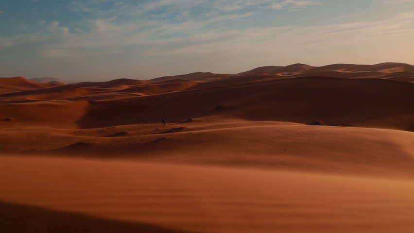 Beautiful Pan over Sahara Sand Dunes during golden hour. Beautiful Camel silhouettes in the background. | Shutterstock HD Video #1026715472