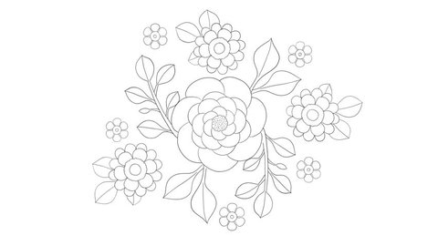 2D hand drawn animation, growing floral background with outlines of flowers and leaves. Frame by frame. Blooming pattern, outline. 4k looping animation.