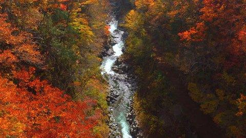 Autumn Valley / Nakatsugawa,urabandai,fukushima,Japan