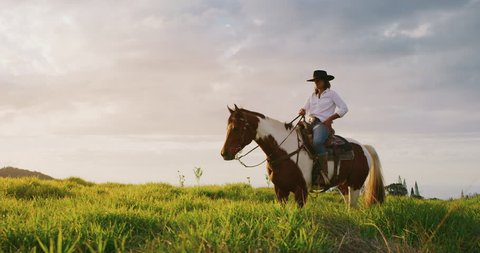 Cowgirl horseback riding at sunset in green field, majestic horse trotting in slow motion with rider