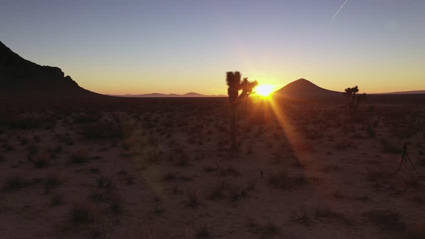 Bright orange sunrise sun flare over purple Mojave Desert with Joshua trees   Shutterstock HD Video #1027798352