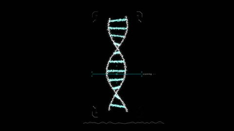 Animation of DNA construction Scan Science animation Genom futuristic footage Conceptual design of genetics information HD 4k UHD Alpha Channel footage