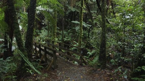 Small bridge located on a nature walk in Kaitoke, Wellington, New Zealand. Filming location for Rivendell in Lord of the Rings