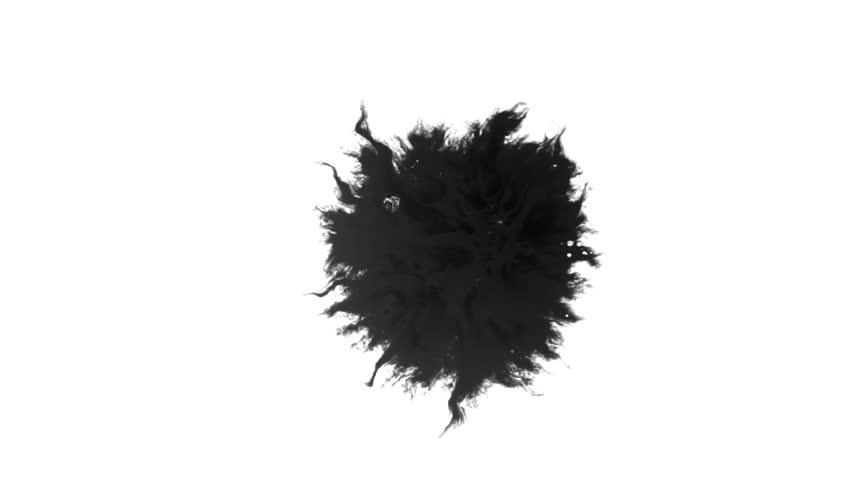 Ink Runs, Blots, 4K footage. Ink in water, Beautiful black watercolor ink drops transition on white background - ink effect, transparent, transition, chamber, isolated, with circle organic flow expand   Shutterstock HD Video #1028445572