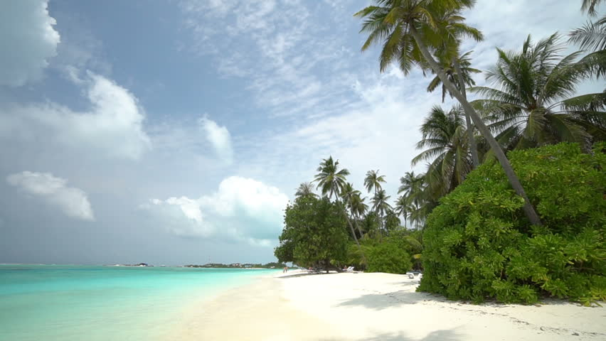Stunning view of sandy beach on tropical island, palm trees and beautiful clear waters | Shutterstock HD Video #1028695292
