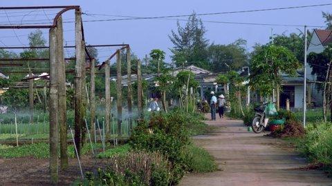 Organic farm in countryside of Hoi an Vietnam
