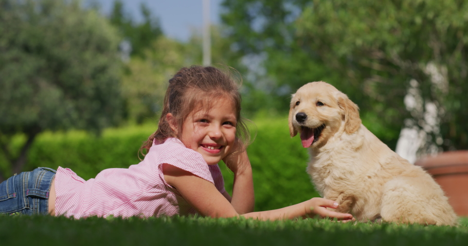 Slow motion of little girl lying on the lawn of a garden is cuddling and kissing a puppy of golden retriever dog. | Shutterstock HD Video #1029656552
