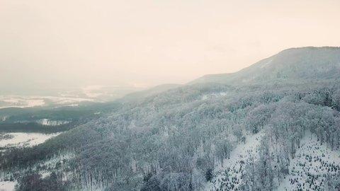 Aerial shot of snow on trees & mountains, Niseko, Hokkaido, Japan