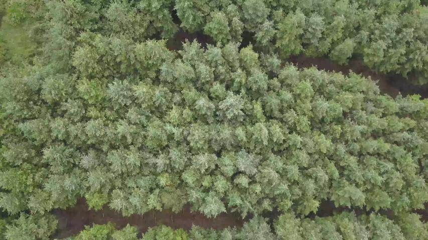 Drone Video Dublin Mountains in Ireland   Shutterstock HD Video #1030327322