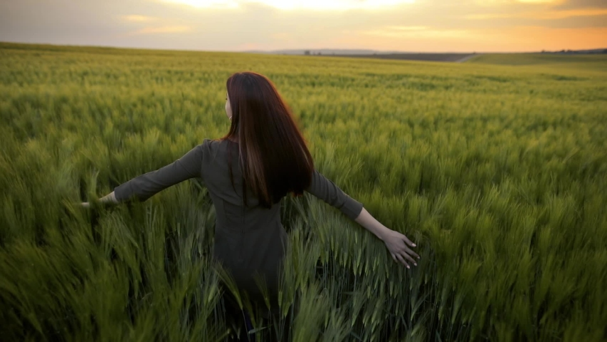 A young girl happily walking in slow motion through a field touching with hand wheat ears. Beautiful carefree woman enjoying nature and sunlight in wheat field at incredible colorful sunset | Shutterstock HD Video #1030587542