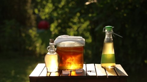 Jar with kombucha( Manchurian mushroom) tea drink, tea mushroom and bottles, woman hand pouring filtered kombucha in glass. Sunny evening in garden. Natural probiotics concept.