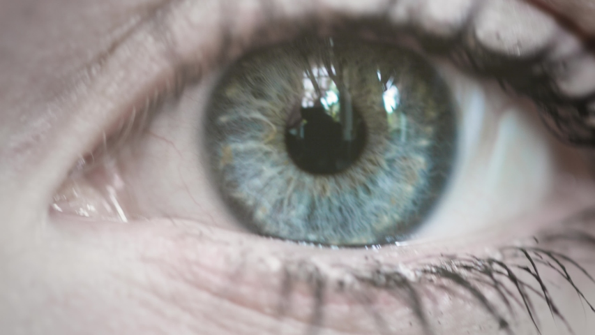 Blue eyes in close up | Shutterstock HD Video #1031286242