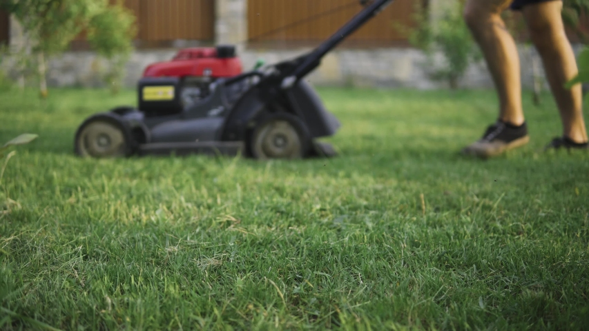 Green grass in the garden and man with lawn mower approaching in the background   Shutterstock HD Video #1031543672