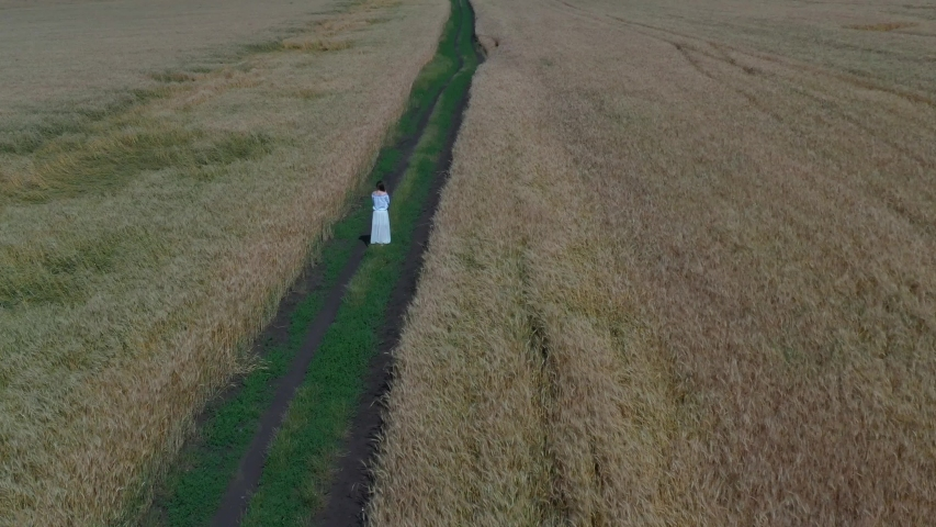 Young lady between 30 and 35 years old in wheat field. Aerial shooting | Shutterstock HD Video #1032583832
