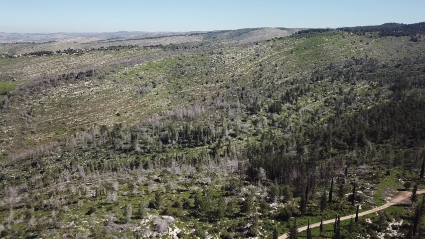 Jerusalem hills in spring, Drone shot, Israel   Shutterstock HD Video #1032894032