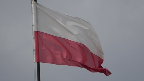 Waving Polish Flag, clear sky in background