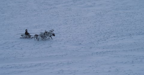 Wonderful video of a man on a sleigh have a ride with beautiful reindeers in the middle of Arctic