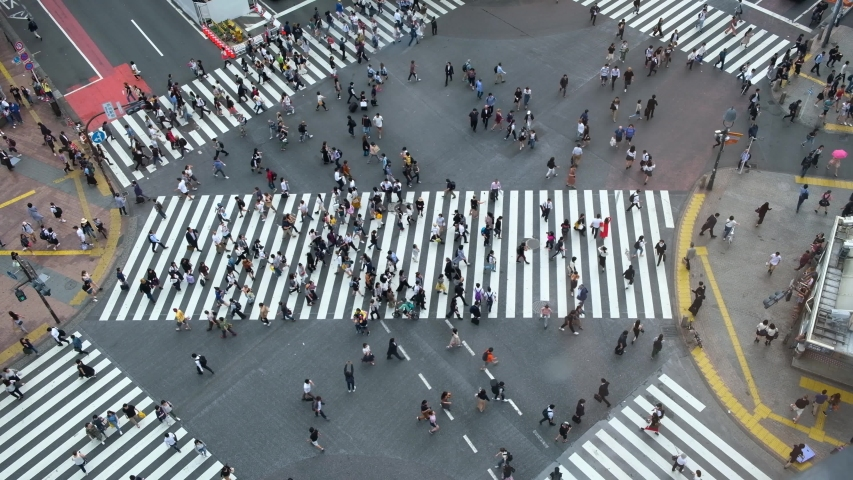 Shibuya, Tokyo, Japan - Aerial view of pedestrians walk at Shibuya Crossing. The scramble crosswalk is one of the largest in the world. | Shutterstock HD Video #1034411042