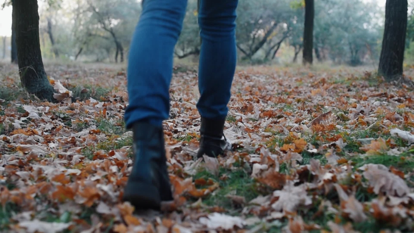 Back view of woman`s legs in blue jeans and black boot walking on fallen leaves in autumn park | Shutterstock HD Video #1034918492