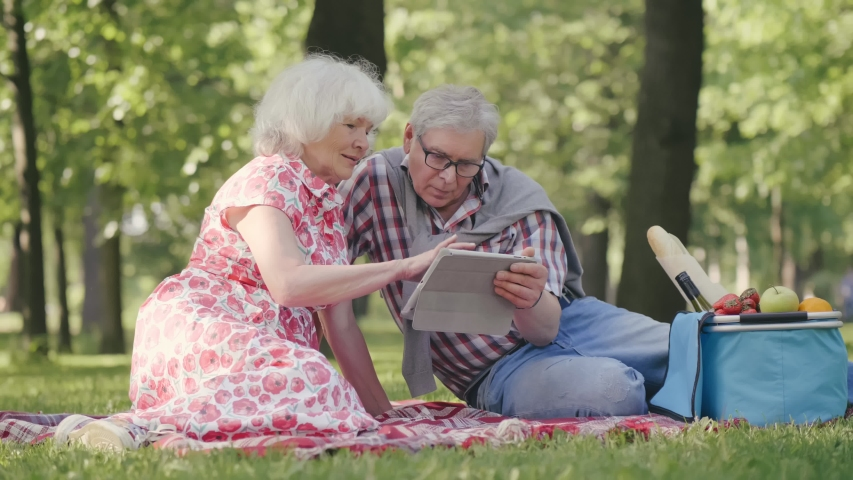 Shot of a happy senior couple having a picnic at the park and using digital tablet | Shutterstock HD Video #1035172112