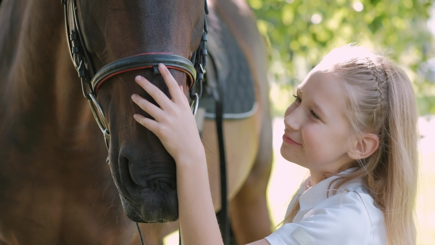 Girl teenager walks on the field with a brown horse. Hugs and feeds her apples. | Shutterstock HD Video #1035561962