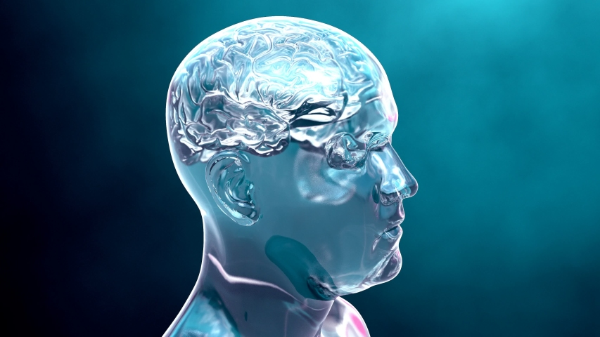 Journey into the brain that passes through the neurons cells that transmit information or memories in blue color 4k animation   Shutterstock HD Video #1036081862