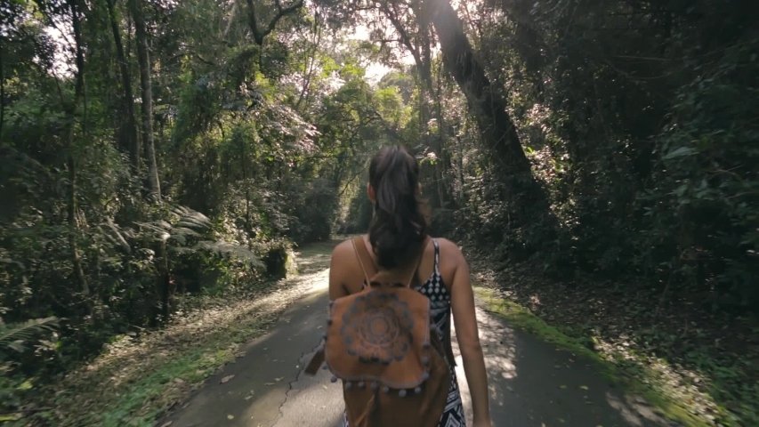 Hiking woman walk in rainforest jungle. Rear back view of girl hiker walking with backpack through dense rain forest nature on brazil, summer day, sun effect.  | Shutterstock HD Video #1036688432