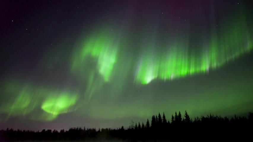 Realistic real time (not timelapse) colorful aurora borealis (northern lights) dancing over trees in Alaska | Shutterstock HD Video #1036783772