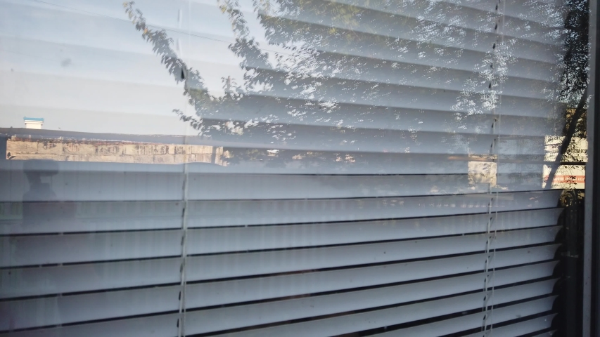 Woman Looking Through the Blinds. Girl looking out the window   Shutterstock HD Video #1036823042