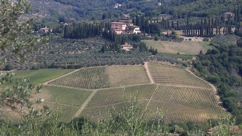 Greve in Chianti, Tuscany, Italy. Landscape of the Chianti hills with vineyard cultivation. Ancient Vignamaggio villa in Greve in Chianti with rows of vines.