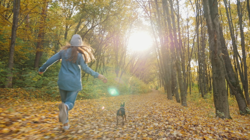 Rear view: Adorable young girl running with her cute dog in the autumn forest in warm sunny day, slow-motion | Shutterstock HD Video #1038370262