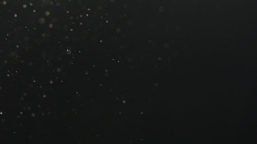 Dust particles in slow motion | Shutterstock HD Video #1038460292