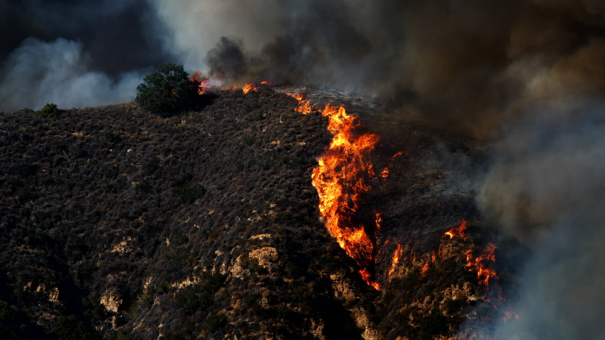 Saddleridge Fire Los Angeles County Near Santa Clarita, Porter Ranch, Sylmar California Wildfire | Shutterstock HD Video #1038855032