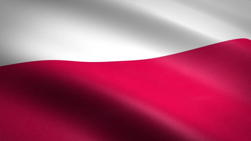 Flag of Poland. Waving flag with highly detailed fabric texture seamless loopable video. Seamless loop with highly detailed fabric texture. Loop ready in HD resolution 1080p 60fps | Shutterstock HD Video #1039289342