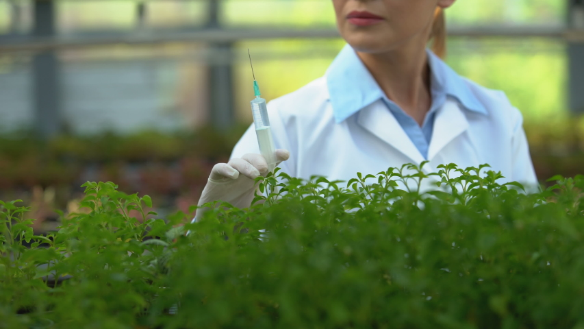 Agricultural scientist injecting fertilizer in soil, testing chemical agent | Shutterstock HD Video #1039583282