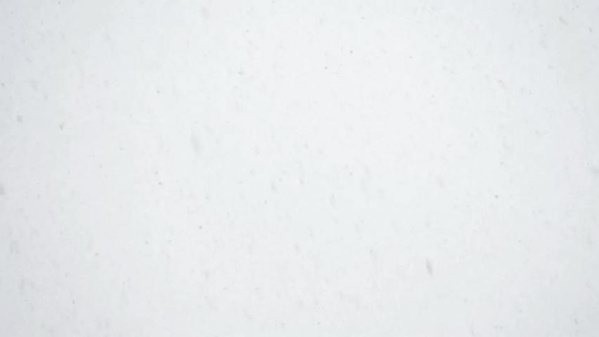 Snowfall against the sky. Not video effect, but real video shooting. | Shutterstock HD Video #1040250812