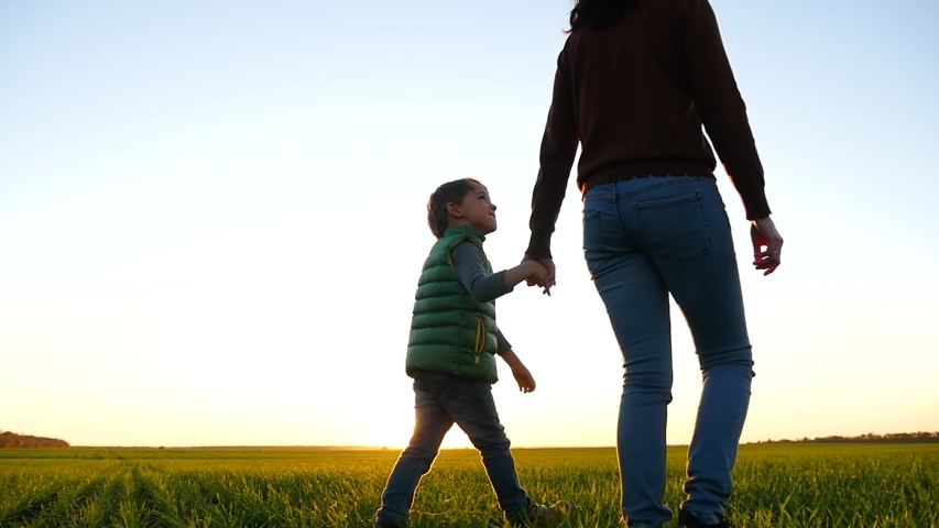 The little little boy smiles and looks at his mom. Mother and child walk across a green meadow against the sunset, holding each other's hands. | Shutterstock HD Video #1041456502