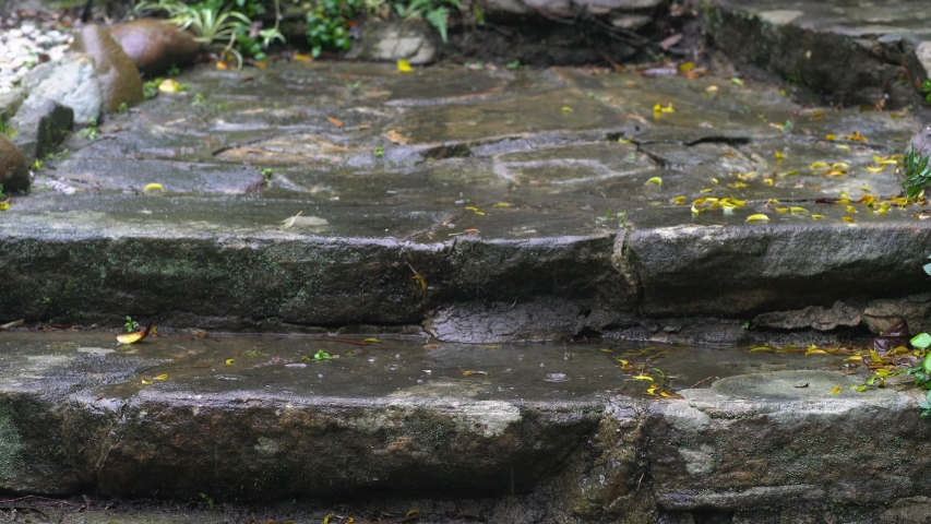 Rough dark grey stone stairs with scattered yellow leaves under falling raindrops.
