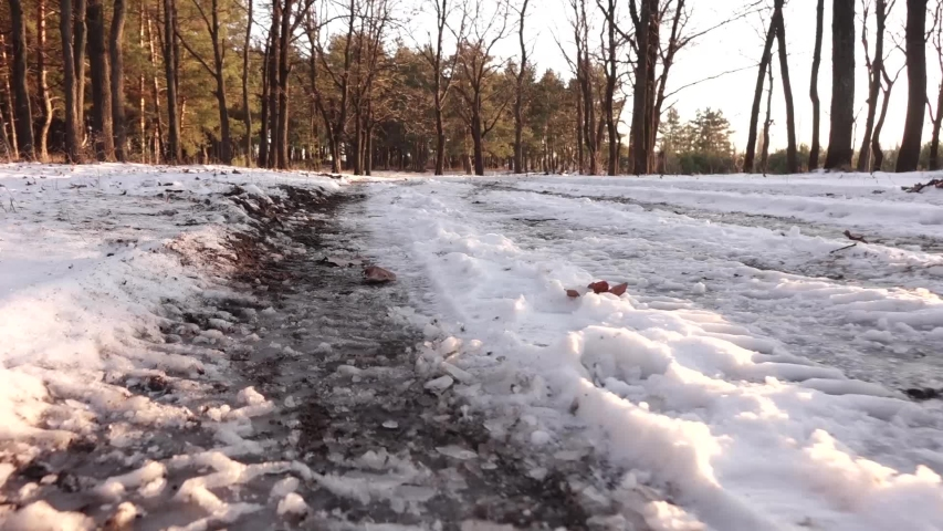 Traces of the wheels of the car on a snow-covered path. | Shutterstock HD Video #1042373272