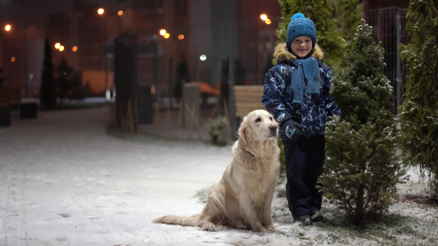 Beautiful slow motion video - little boy with his dog cheerfully shakes off snow from a snowy Christmas tree in a park on a winter evening | Shutterstock HD Video #1042374712