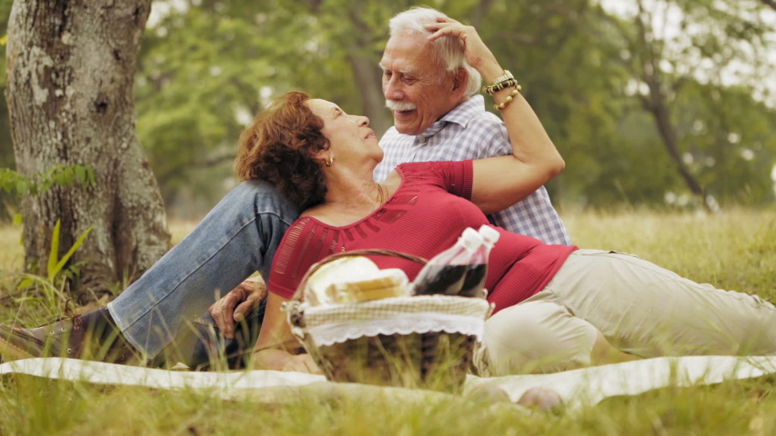 Old people, senior couple, elderly man and woman, husband and wife in park, happy retired seniors, retirement age and love. Outdoors activities, fun. Grandpa and grandma at picnic. Slow motion  | Shutterstock HD Video #1042616872