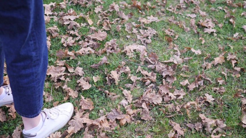 A girl walks on the lawn in jeans and sneakers, warm winter. Ankles without socks in autumn weather | Shutterstock HD Video #1046258242