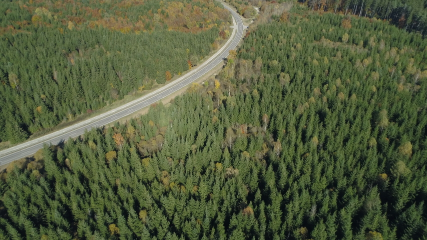 Aerial view of road with traffic through autumnal forest, Germany | Shutterstock HD Video #1046743402