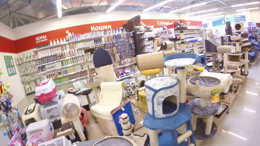 SIMFEROPOL, CRIMEA, RUSSIAN FEDERATION - CIRCA JUNE 2015: Chain of retail pet stores Kosmozoo offers wide variety of supplies, products, toys and food. Shopping for new cat tree, furniture, house | Shutterstock HD Video #10590902