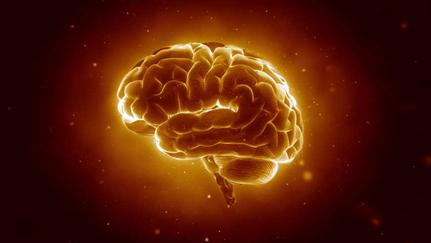 Big Strong Brain pulsing | Shutterstock HD Video #1106782