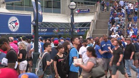 Toronto, Ontario, Canada August 2015 Toronto blue jays baseball fans at game during August 2015 winning streak