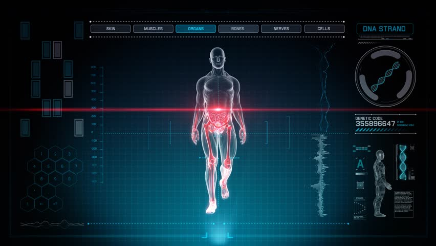 Futuristic Interface Display of Full Body Scan with Human Anatomy of Muscles, Bones and Organs WALKING on Holographic Touch Screen on Blue Background 4K Ultra High Definition for Medical Application