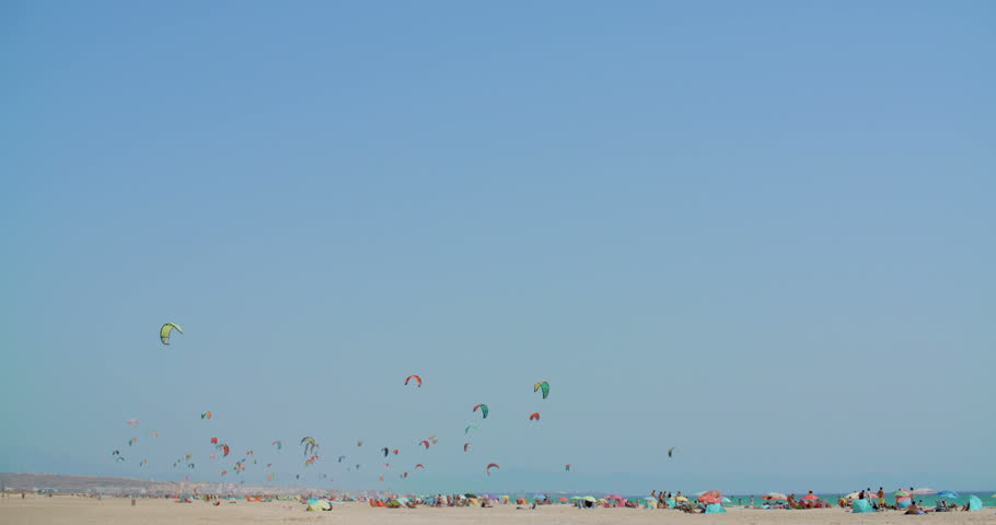 Beach with Kite Surfers on Slow Motion Video | Shutterstock HD Video #11301872