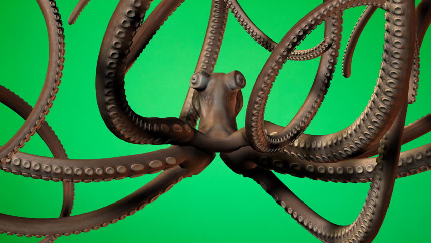 Underwater octopus animation on green screen. Easy editing and looping. HD | Shutterstock HD Video #1137403