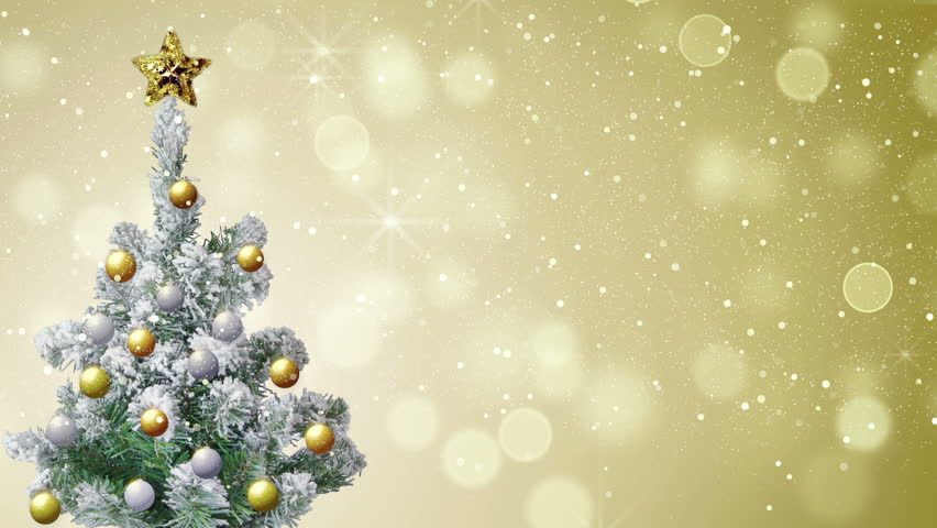 Christmas Tree And Gold Glitter Stock Footage Video 100 Royalty Free 11457482 Shutterstock